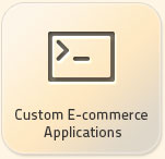 custom ecommerce application